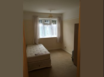 1 room good size to let