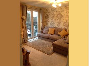 EasyRoommate UK - Thorpe Astley room to rent - Braunstone, Leicester - £380
