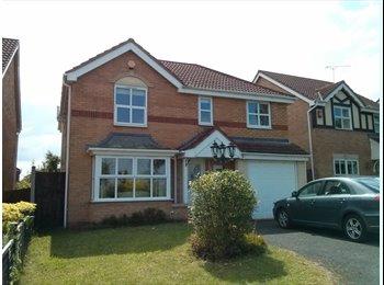 EasyRoommate UK - Professonal doubleroom in brand new detached house - Stafford, Stafford - £370