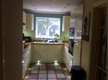 EasyRoommate UK - NEWLY RE FURBISHED HOUSE WITH LOVELY ROOM - Portchester, Fareham and Gosport - £346