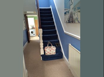 EasyRoommate UK - House share two double rooms available - St Judes, Plymouth - £350