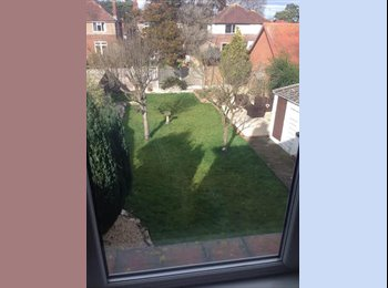 EasyRoommate UK - Beautiful room rental - Winton, Bournemouth - £425