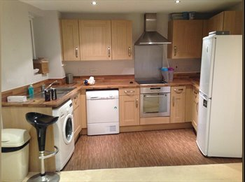 EasyRoommate UK - Spacious & clean flat share - Colchester, Colchester - £550