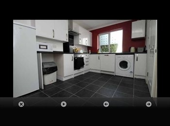 EasyRoommate UK - 1 Double bedroom available- student property - Canterbury, Canterbury - £455