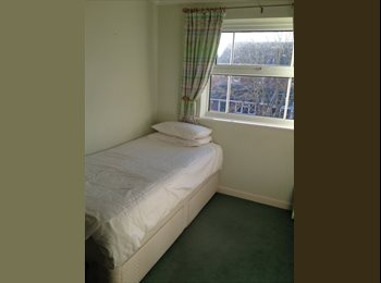 EasyRoommate UK - A room in need of a person! - Pingreen, Stevenage - £395