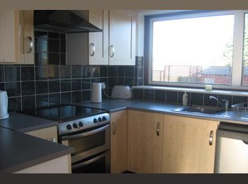 Spacious furnished double room for rent in student property