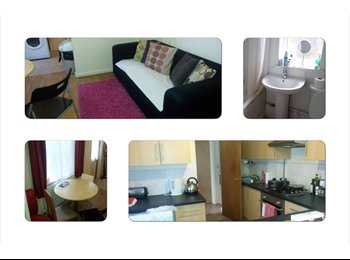 EasyRoommate UK - Big room with own shower unit near City Centre - Cathays, Cardiff - £350