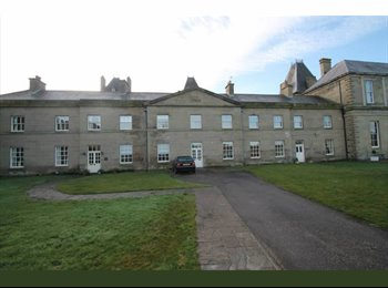 EasyRoommate UK - large double room with ensuite bathroom - Ruabon, Wrexham - £400