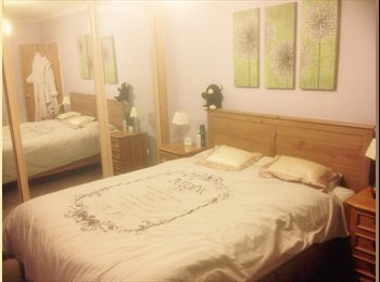 EasyRoommate UK - JUST REDUCED LOVELY DOUBLE ROOM IN CLEAN HOUSE - Mastrick, Aberdeen - £520