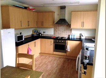 Great double room available in large modern house!