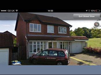 EasyRoommate UK - Foxglove room - Amington, Tamworth - £434