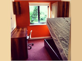 EasyRoommate UK - Stylish Double Room Available in Private Halls - Canterbury, Canterbury - £560