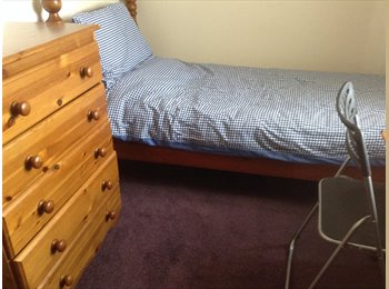 EasyRoommate UK - Cozy room to rent - Exeter, Exeter - £400