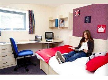 EasyRoommate UK - Mealmarket Exchange Premium Ensuite Room To Let - Old Aberdeen, Aberdeen - £532