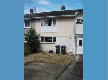 EasyRoommate UK - 1x student room to rent, Hatfield. - Hatfield, Hatfield - £325