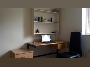 EasyRoommate UK - Urgent! Room for rent close to the University! - Colchester, Colchester - £220