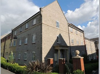 EasyRoommate UK - Room available in a 2 bed, 2 bathroom flat - St Georges, Bristol - £550