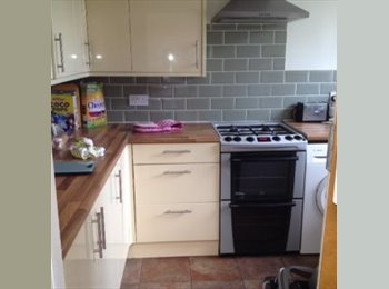 Clean and tidy housemate required