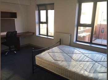 EasyRoommate UK - ensuite double room all bills included available 9 April - Kelham Island, Sheffield - £135