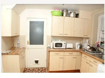 EasyRoommate UK - Nice and clean Room to be shared with other guy - Harrow, London - £300