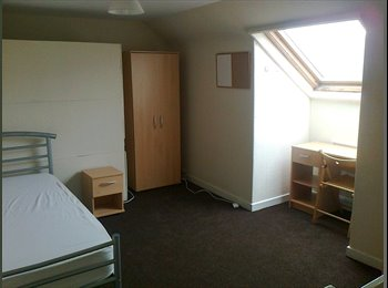 EasyRoommate UK - Room on Edmund Rd - Heeley, Sheffield - £195