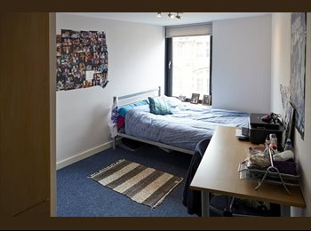 EasyRoommate UK - Double Rooms Available in City Centre Property - Kelham Island, Sheffield - £377