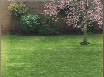 EasyRoommate UK - Lovely large double bedroom on Central Line. - Woodford Green, London - £700