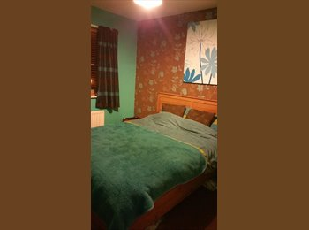EasyRoommate UK - room to rent - Bangor, Bangor - £300
