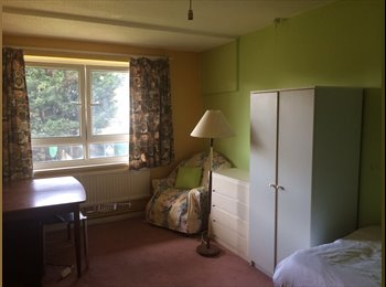EasyRoommate UK - SUPERB SINGLE ROOM FOR RENT IN GREAT LOCATION - Chiswick, London - £500