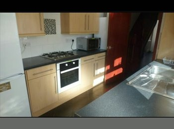EasyRoommate UK - 18 Rhymney street - Cathays, Cardiff - £310