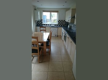 EasyRoommate UK - Double Room In Lovely House Share in Canton - Canton, Cardiff - £300