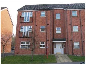 EasyRoommate UK - Beautiful Two Bed Modern Apartment - East Ardsley, Leeds - £495