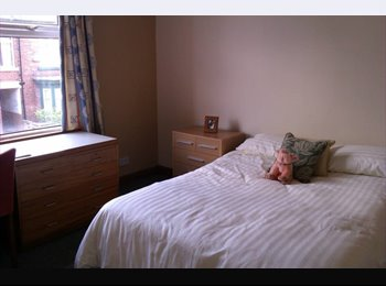EasyRoommate UK - Single room Eccleshall Road for student and profes - Ecclesall Road, Sheffield - £350