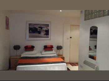 EasyRoommate UK - Large Bright Studio Annex - Catford, London - £750