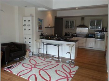 EasyRoommate UK - Modern spacious apartment - Birmingham City, Birmingham - £400