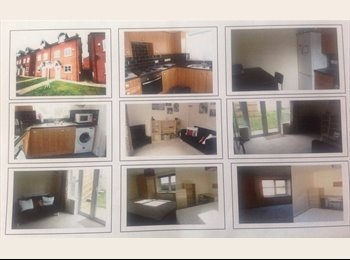 EasyRoommate UK - 2  Double Bedrooms available in house - Newcastle-under-Lyme, Newcastle under Lyme - £390