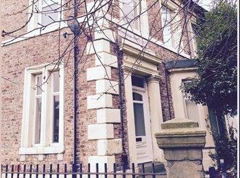 EasyRoommate UK - Spacious double bedroom, near the city centre. - Newcastle City Centre, Newcastle upon Tyne - £338