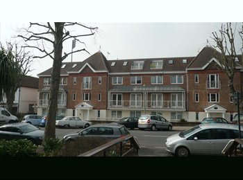 EasyRoommate UK - Nice location - Hove, Brighton and Hove - £550