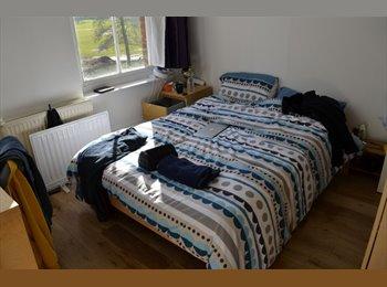 EasyRoommate UK - Amazing Double bedroom w/ ensuite in Zone 2 - Finsbury Park, London - £650
