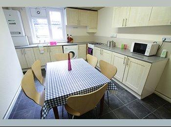 EasyRoommate UK - House share - Headingley - Headingley, Leeds - £325