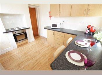 EasyRoommate UK - House Share - Headingley - Headingley, Leeds - £300