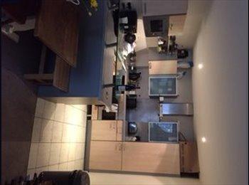 EasyRoommate UK - Modern double room with own bathroom Clifton Vil - Clifton, Bristol - £495
