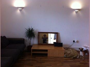 Double room - warehouse style- dalston/stokey