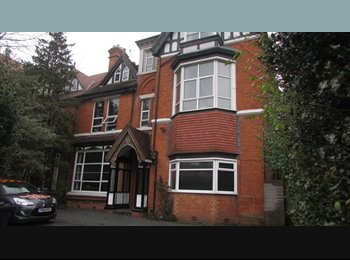 EasyRoommate UK - Top Quality Professional and/or Student House Shares - Moseley, Birmingham - £300