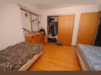 Female roommate wanted in Skokie