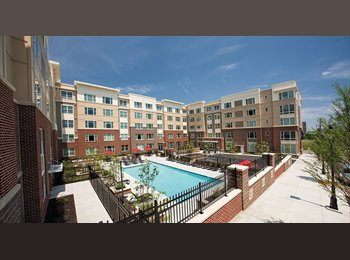 EasyRoommate US - Awesome Apartment in an Amazing Location - Richmond Downtown, Richmond - $600