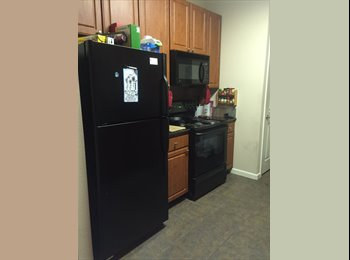 1 Room of 2 bedroom apartment available for rent