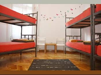 EasyRoommate US -  shared room to stay in Brooklyn - Bushwick, New York City - $600