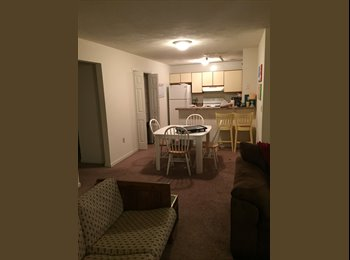 EasyRoommate US - 1 Bedroom available in 4 br apt. in Radford - Portsmouth, Portsmouth - $300