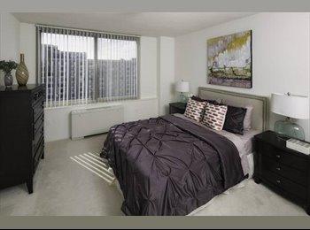 EasyRoommate US - Huge Private bed, private bath 2 blocks from metro - Arlington, Arlington - $1100